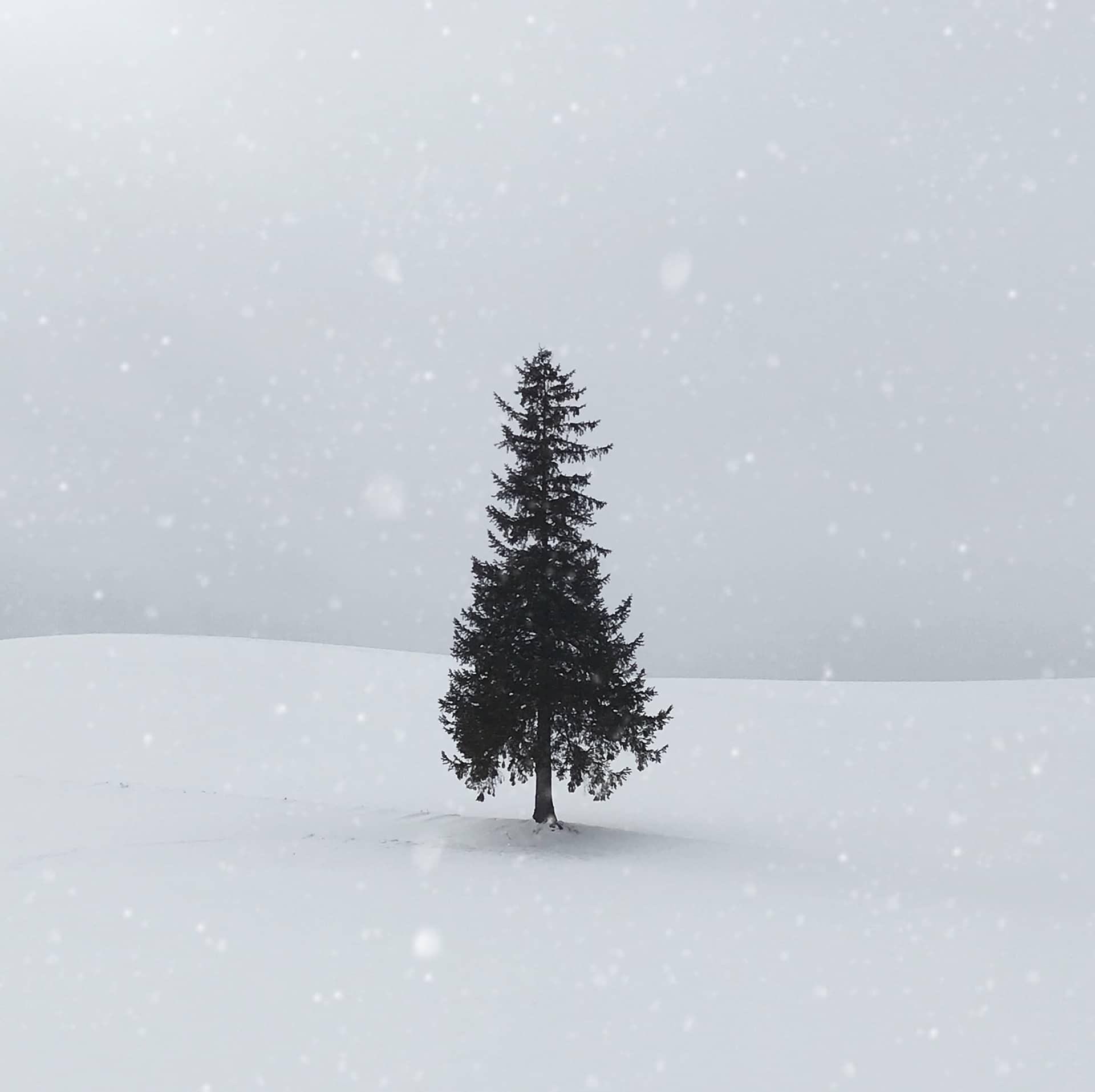 En God men annorlunda Jul